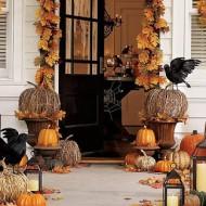 Fall Harvest…..