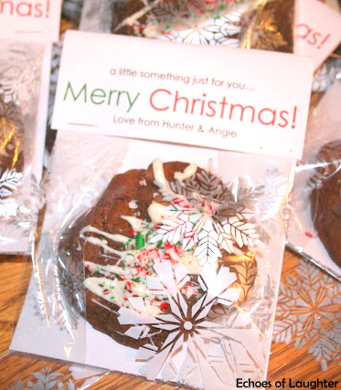 Packaged Christmas Cookie Gift Idea