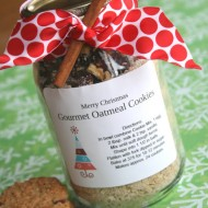Gourmet Oatmeal Cookie Mix In A Jar…