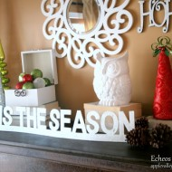 Our Christmas Mantel 2011…