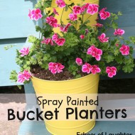 Spray Painted Bucket Planters…
