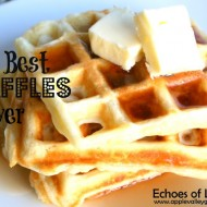 The Best & Easiest Waffles Ever…