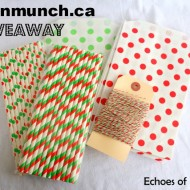 Fantastic Eco-Friendly Stocking Stuffers & Greenmunch Giveaway!