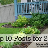 Top 10 Favorite Posts of 2012 & Thank You!