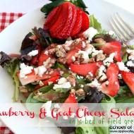 4 Fresh Salads For Spring