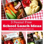 3 Peanut Free School Lunch Ideas