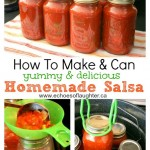How To Make & Can A Delicious Salsa