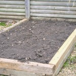 Designing & Growing A New Flower Bed