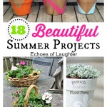 18 Beautiful Summer Projects