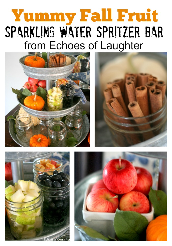 Fall Fruit Spritzer Bar - Echoes of Laughter