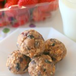 No Bake Fruit & Nut Balls