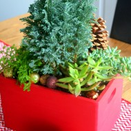 DIY Christmas Planter Box