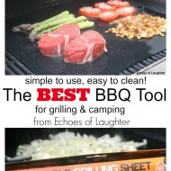 The Best BBQ Tool for Summer Grilling & Camping