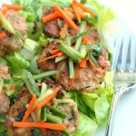 Asian Turkey Slider Salad